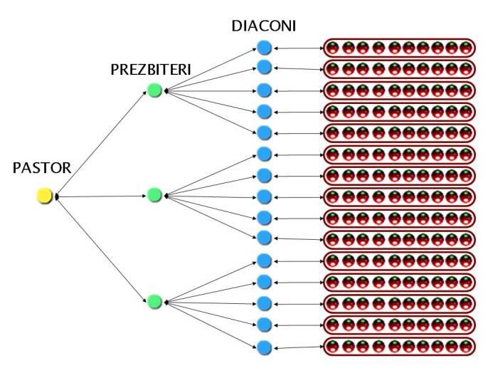structura-conducere1