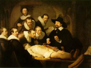 rembrandt-anatomy